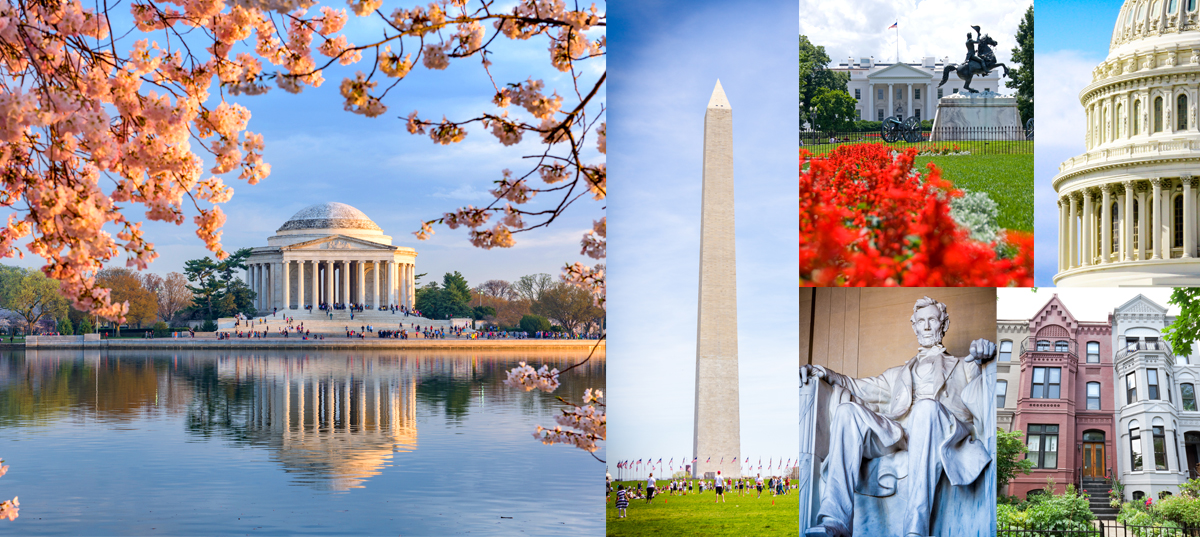 Washington DC City Feature
